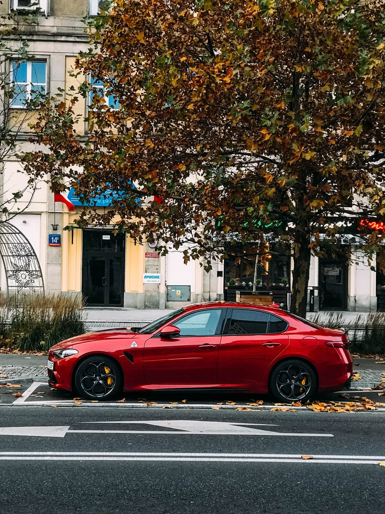 Consejos para encontrar el coche usado perfecto